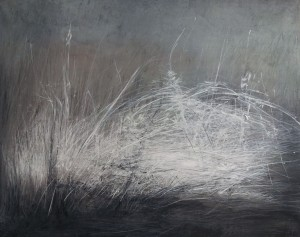 2012 02 08 Herbes blanches Variation II